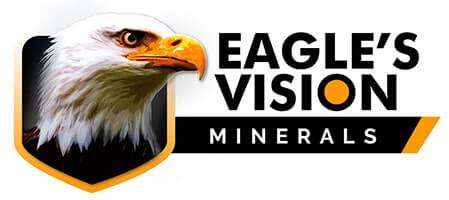 Eagle's Vision Header logo